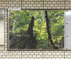 20160420_iichiko201604