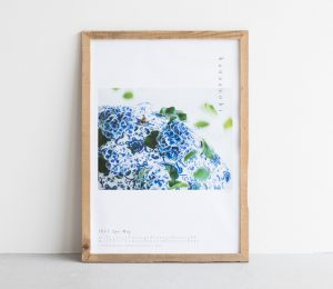 hanaasobi_poster_20170405