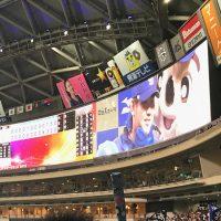 松坂とドアラとナゴヤドーム