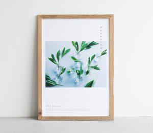 hanaasobi_poster_20170506